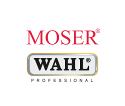 logo_wahl_group